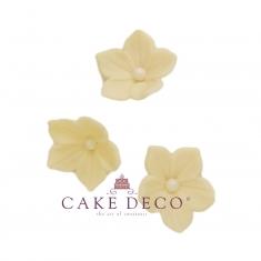 Cake Deco Ivory Petunia (30pcs)