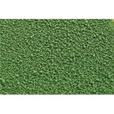 Βούτυρο Κακάο σε Σπρέι - Πράσινο 400ml