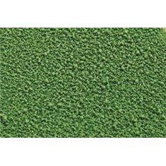 Cocoa Butter Spray 400Ml – Green