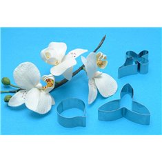 Moth Orchid Flower Petal Cutters Set/3