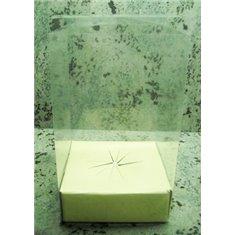 Κουτί PVC Gelatin Παραλληλόγραμμο με χάρτινο στηρίγμα αυγού κάτω - 21xY35 - κατ/λο για Αυγό Πασχαλινό 500γρ.-750γρ.