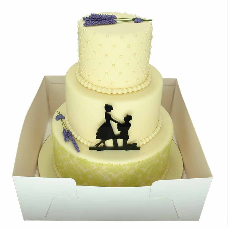 14 Inch Cake Box Extender (14 X 14 X 18 Inch)