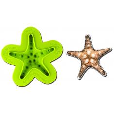 Καλούπι Αποτύπωσης Αστερίας Starfish Mold