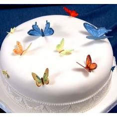 Κουπάτ Πεταλούδες, Πασχαλίτσες & Μέλισσες (Butterflies,Birds & Bees)