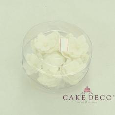 Λευκές πετούνιες με λευκή πέρλα (30τεμ.)
