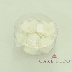 Cake Deco White Petunia with white pearl (30pcs)