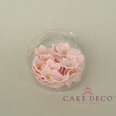 Πετούνιες σε ανοικτό ρόζ χρώμα με χρυσή πέρλα (30τεμ.)