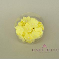 Κίτρινες πετούνιες με λευκή πέρλα (30τεμ.)