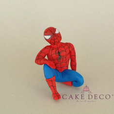Cake Deco Spider figure on the wall (inspired by the hero Spiderman)
