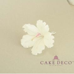 Cake Deco white Hibiscus