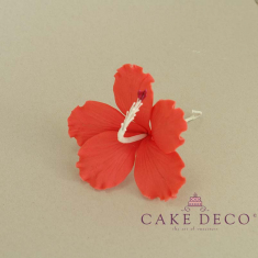 Cake Deco Red Hibiscus
