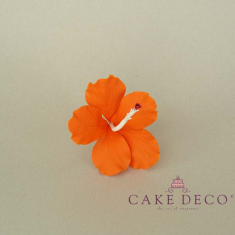 Cake Deco Orange Hibiscus