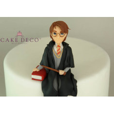 Harry Potter Character Figure