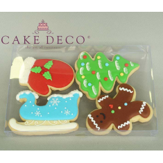 Clear Plastic Box for Cookies & Plaquettes 21x14xH2cm.