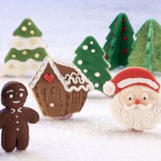 Χριστούγεννα στη Λαπωνία σετ κουπάτ με έμβολο 4τεμ.