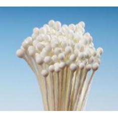 Απλοί Ιβουάρ Μικροί Στρογγυλοί στήμονες της Hamilworth για βρώσιμα λουλούδια 288τεμ.