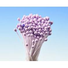Απλοί Λιλά Μικροί Στρογγυλοί στήμονες της Hamilworth για βρώσιμα λουλούδια 288τεμ.
