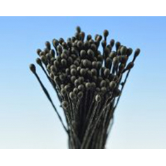 Black Small Round Dull Head 288 heads per package