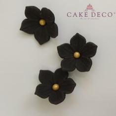 Μαύρες πετούνιες με χρυσή πέρλα (30τεμ.)