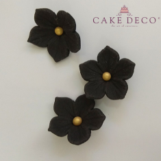 Cake Deco Black Petunias with golden pearl (30pcs)