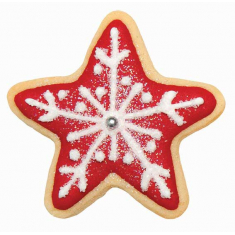 Stars Cookie & Cake Cutter Set of 2