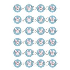 Μπλε Λαγουδάκια Meri BakeOns Φύλλο για Mαρεγκάκια