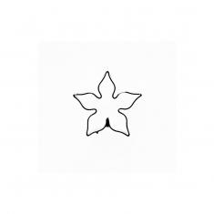 Calyx - Jasmine - Stephanotis Inox Cutter